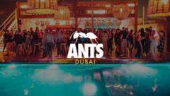 Steve Lawler - Live @ Soho Beach DXB presents: Ants 2018
